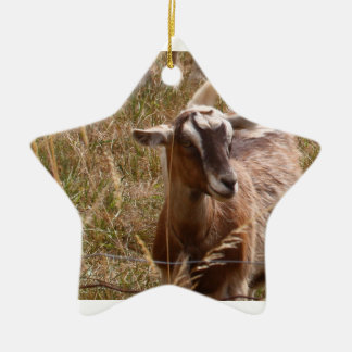 Goat Ornament