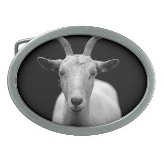 Goat Oval Belt Buckles