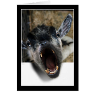 Goat Screaming to Get Out Card