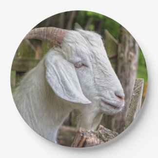 Goat Sees Greener Grass Paper Plate