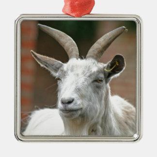 Goat Silver-Colored Square Decoration