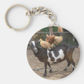Goat taxi basic round button key ring