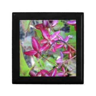 Goat Weed-.jpg Small Square Gift Box