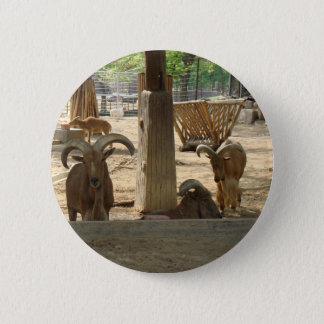 Goats 6 Cm Round Badge