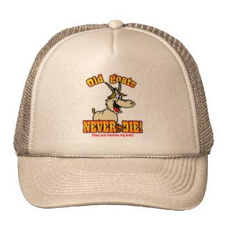 Goats Hat
