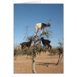 Goats in Argan tree Greeting Card