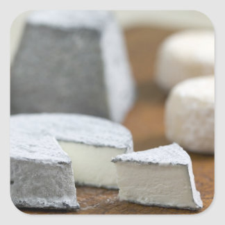 Goat's milk cheeses - Selles-sur-Cher, Square Sticker