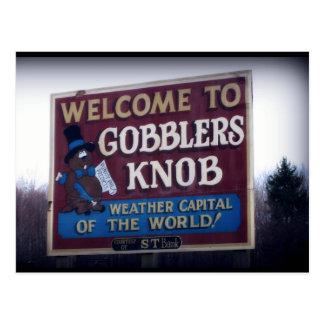 Gobblers Knob Punxsutawney, Pennsylvania Postcard