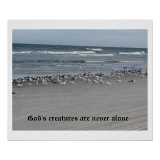 """God's Creatures Are Never Alone 24"""" x 20"""" Poster"""
