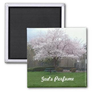 God's perfume magnet