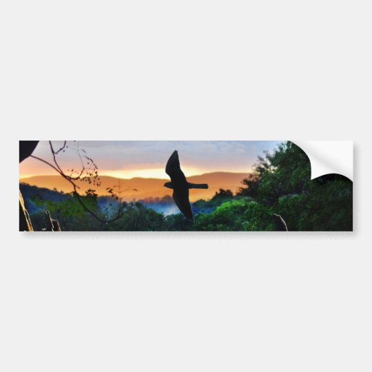 God's Window with bird in flight Bumper Sticker