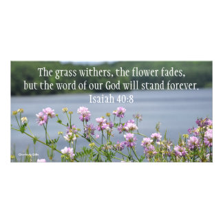 God's Word Stands Forever Personalized Photo Card