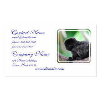 Goeldi Monkey Pack Of Standard Business Cards