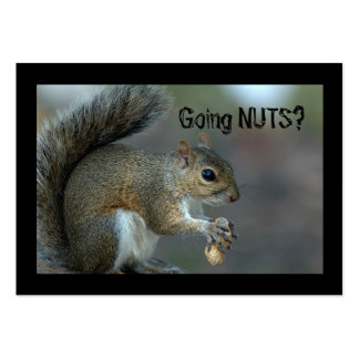 Going nuts pack of chubby business cards