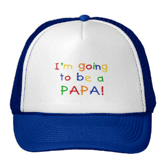 Going to be a Papa - Primary Colors Cap