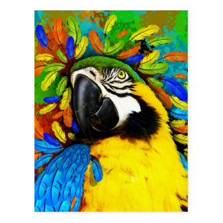 Gold and Blue Macaw Parrot Fantasy Postcards