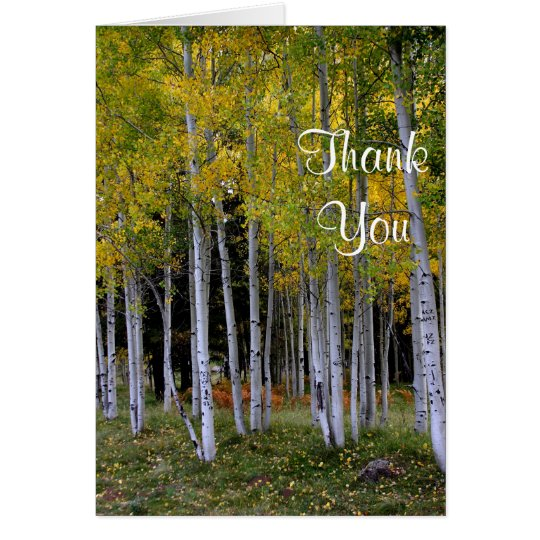 Gold and green Aspens thank you Card
