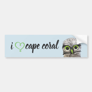 Gold and Silver Burrowing Owl Bumper Sticker