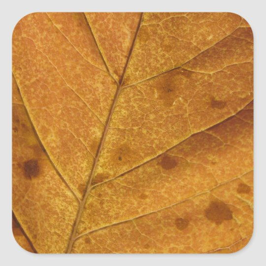 Gold Autumn Leaf Photo Sticker