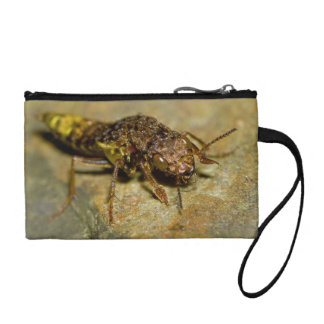 Gold & Brown Rove Beetle Coin Purses