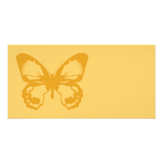 Gold Butterfly Photo Cards