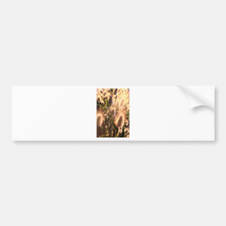 Gold cotton tail flowers bumper sticker