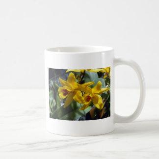 Gold Digger (Laeliocattleya) flowers Coffee Mug