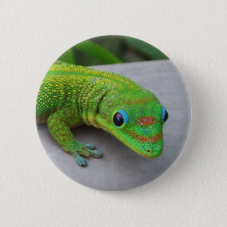 Gold Dust Day Gecko – Audition and Get Some Gecko 6 Cm Round Badge