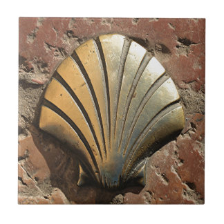 Gold El Camino shell sign, pavement, Leon, Spain Tile
