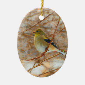 Gold finch ceramic oval decoration
