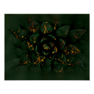 Gold Glow Succulent Poster