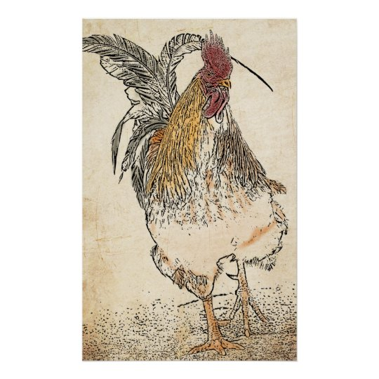 Gold Laced Cockerel Poster