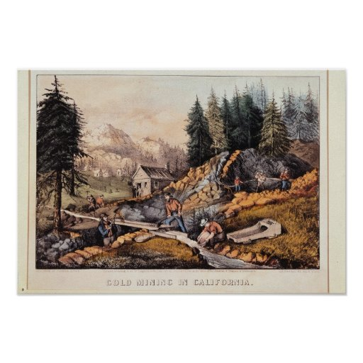 Gold Mining in California Poster
