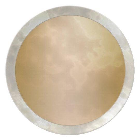 Gold Rose Silver Marbled Melamine Plate