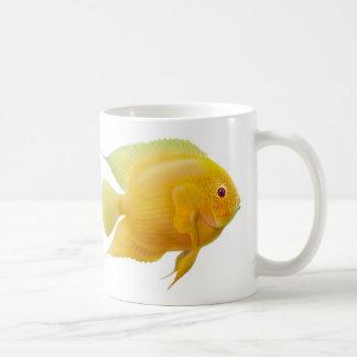 Gold Severum Cichlid Mug