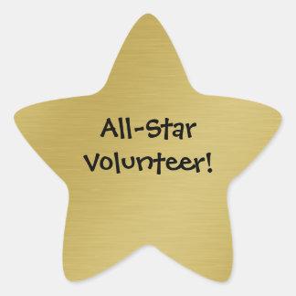 Gold Star Volunteer Recognition Star Sticker