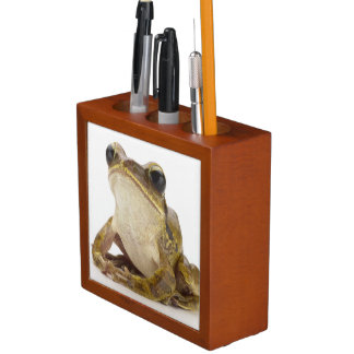 Gold tree frog desk organiser