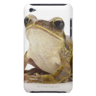 Gold tree frog iPod Case-Mate cases