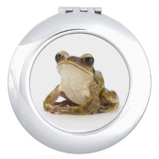Gold tree frog makeup mirrors