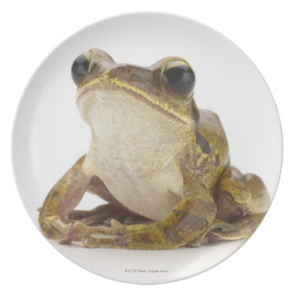 Gold tree frog party plate