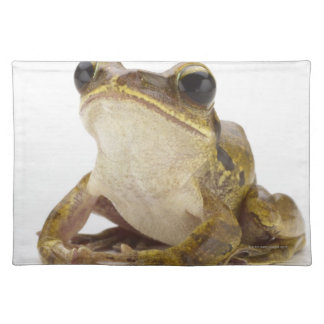 Gold tree frog placemat
