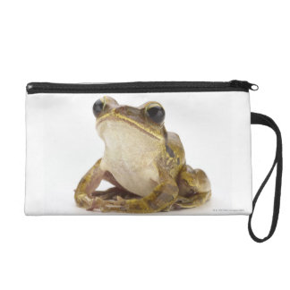 Gold tree frog wristlet purse