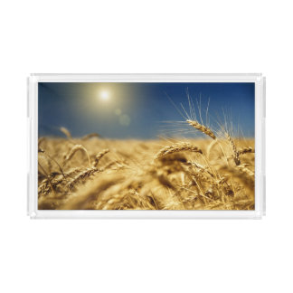 Gold wheat and blue sky with sun acrylic tray