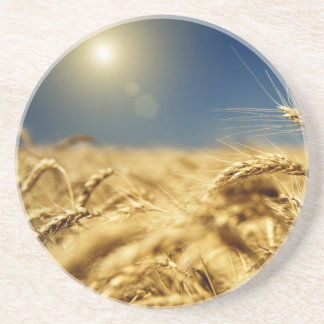 Gold wheat and blue sky with sun coaster