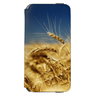 Gold wheat and blue sky with sun incipio watson™ iPhone 6 wallet case