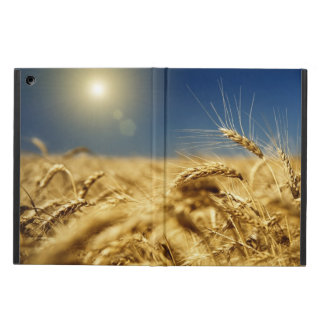 Gold wheat and blue sky with sun iPad air case