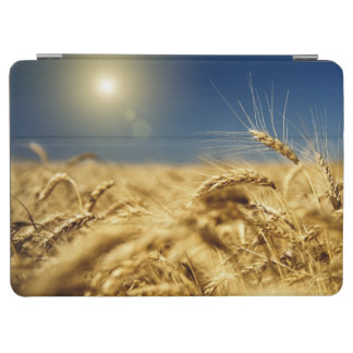 Gold wheat and blue sky with sun iPad air cover