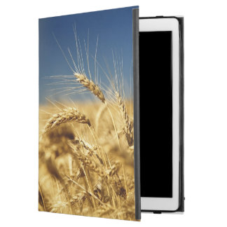 """Gold wheat and blue sky with sun iPad pro 12.9"""" case"""