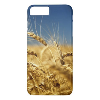 Gold wheat and blue sky with sun iPhone 8 plus/7 plus case