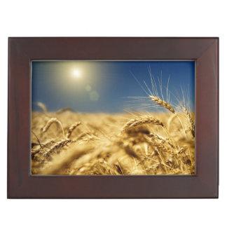 Gold wheat and blue sky with sun keepsake box